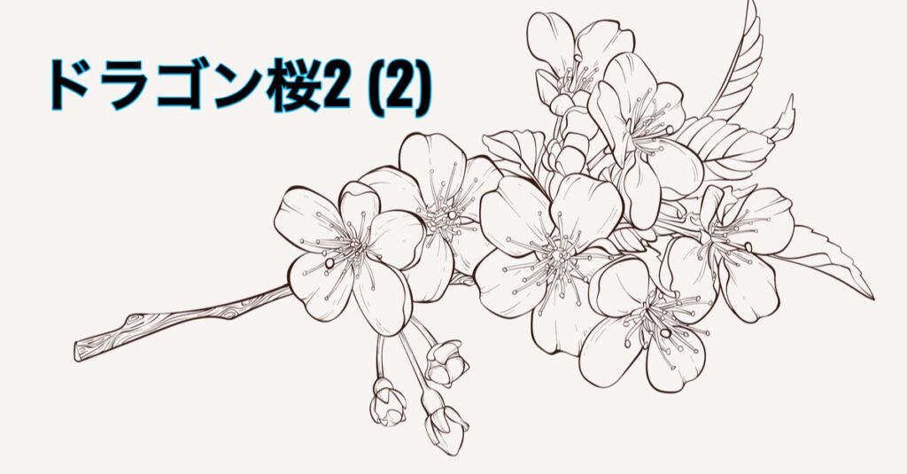 【BR vol.121】運に乗れ