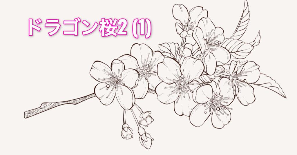 【BR vol.115】東大へ行け
